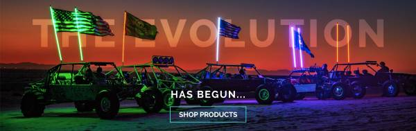 Buggy Whip - The Evolution Has Began