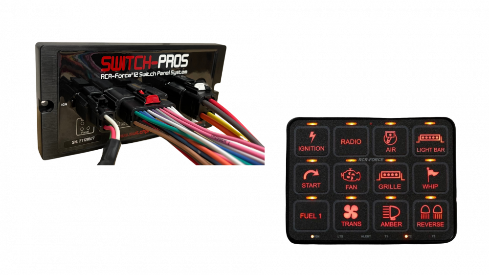 12 USER -PROGRAMMABLE SWITCHES (SWITCH PROS)