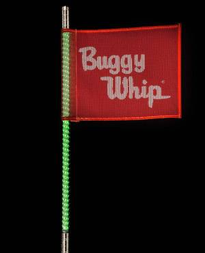 Buggy Whip Inc brings you the Evolution