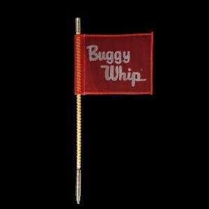 Why Buggy Whip?